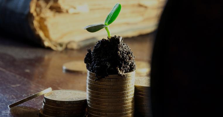 """П'ятеро нардепів заробляють на """"зеленій"""" енергетиці (аналітика)"""