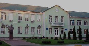 Півроку роботи Гостомельської ради: депутатка Шальман прогуляла 70% засідань сесій