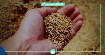 Багатії та злидні Кіровоградської облради: найбагатші - аграрії