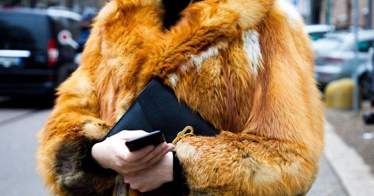 """Фото: Секрети команди Труханова: як купувати """"Лексуси"""" та шуби з низькими доходами"""