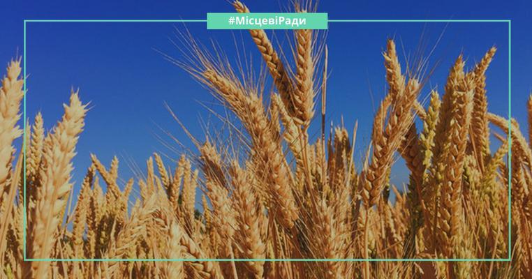 73 тонни пшениці – хабар для голови сільради: судові справи депутатів Херсонщини