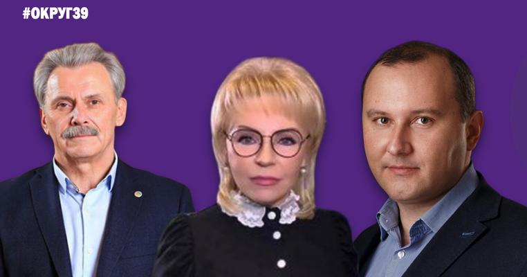 """""""Слуга народу"""" та Коломойський, екс-регіонали, підозрювані: округ №39"""