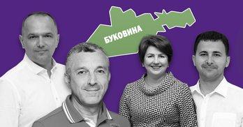 """Одні й ті самі підрядники допомогли """"слугам"""" перемогти на Буковині"""