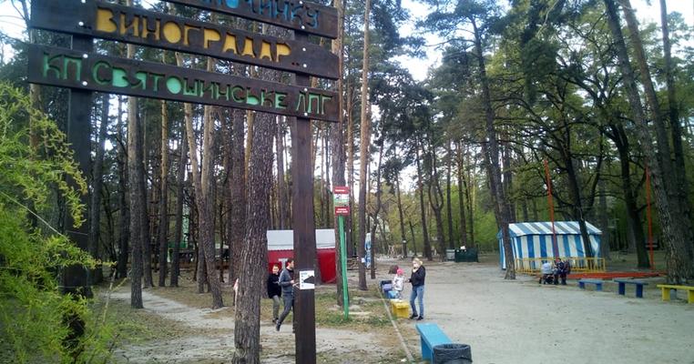 Проєкт Генплану Києва: кияни проти знищення Біличанського лісу та парків замість лісопарків