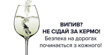 Повну тезку депутатки Костенко раніше штрафували за водіння в нетверезому стані (Оновлено)
